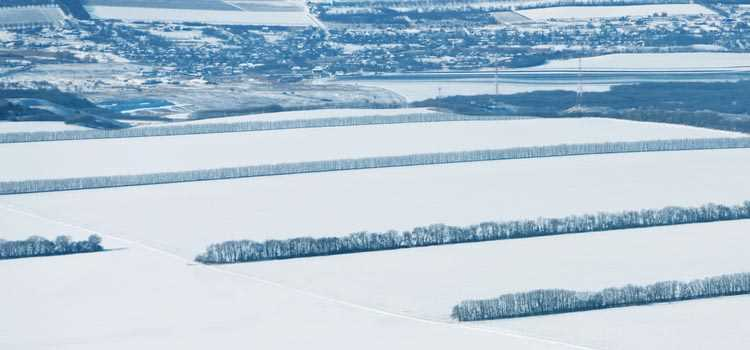 Helicopter Aerial Agriculture - frost protection