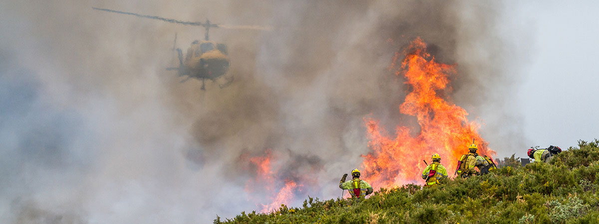 Aerial Firefighting Services