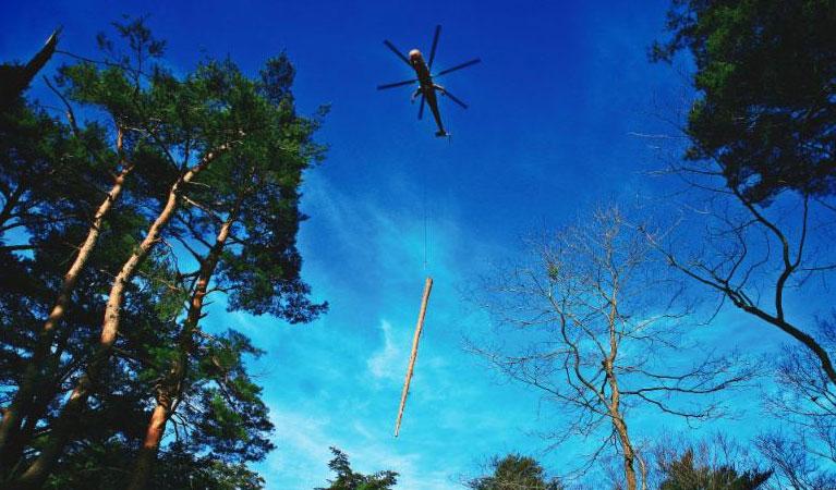 Denver Heli-Logging, Utility Servicing & Emergency Services - Denver Helicopter Lift Solutions