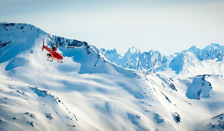 Lakewood Heli-Skiing