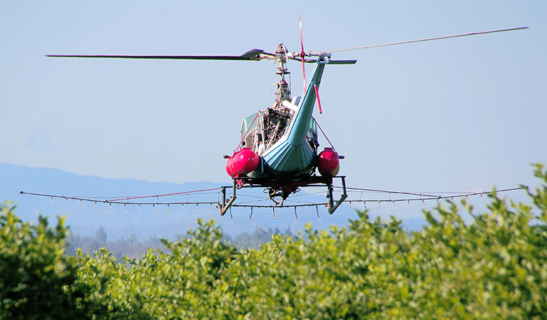 Brush and Weed Control - Aerial application in Colorado