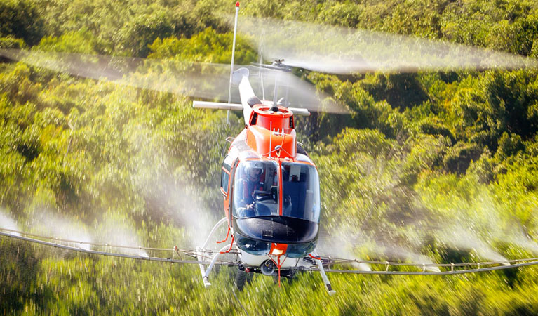 Mosquito and Pest Control - Aerial Application in Florida