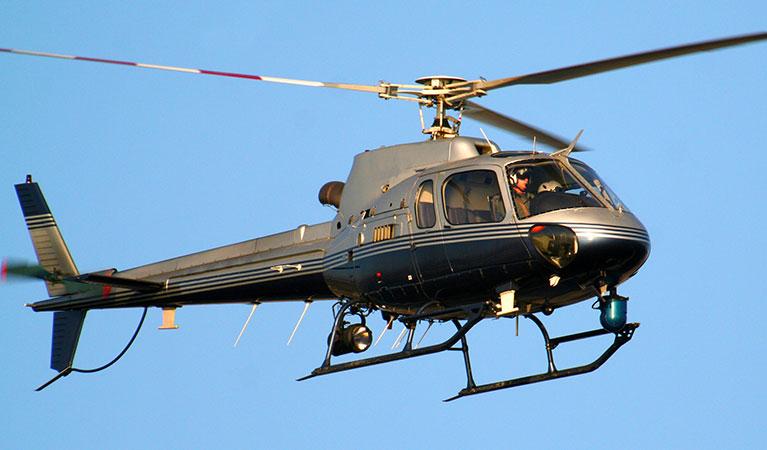 Law Enforcement Reconnaissance and Surveillance