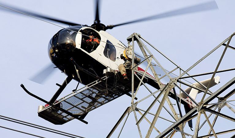 Transmission Line construction, Repair, and Maintenance