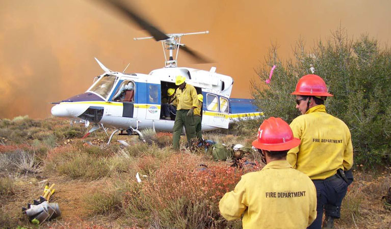 Disaster Response Services - Government Helicopter Support