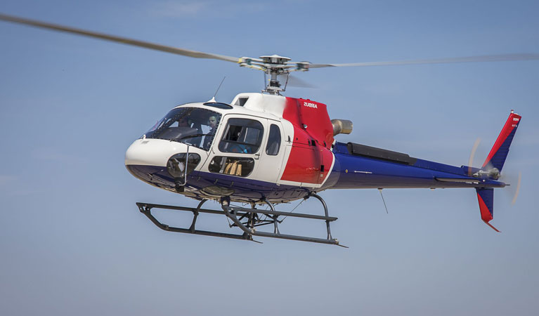 Airbus H125 (AS350 B3E) - Government Helicopter Support