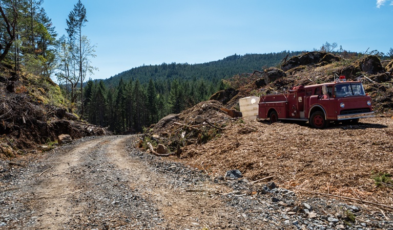 Reduces Road Building - Helicopter Logging