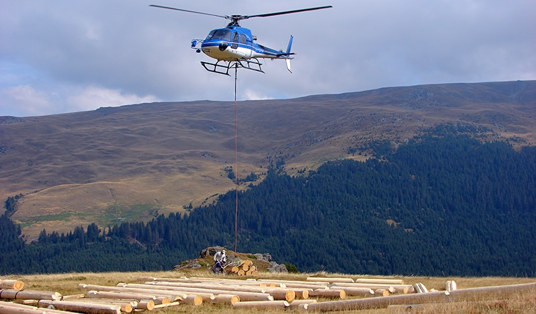 Maximize Timber Harvesting - Helicopter Logging