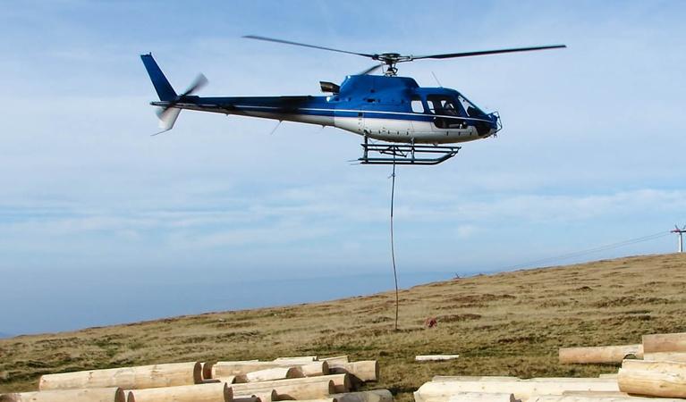 Helicopter Logging