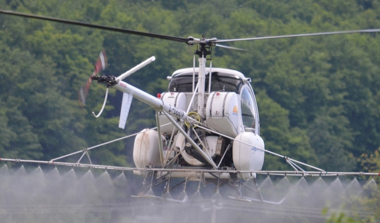 Brush & Weed Control Services - Aerial Application
